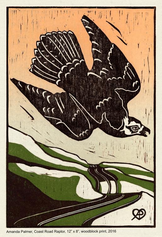 coast road raptor