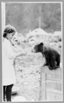 Girl and bear cub, Alaska, ca. 1915