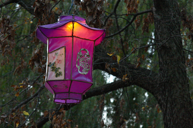 The Magic of Lanterns