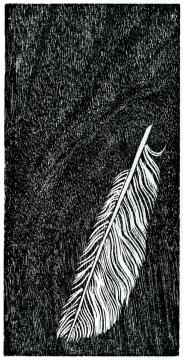 FeatherV1e