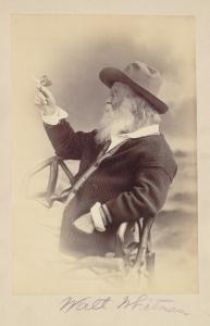 WaltWhitmanButterfly1873