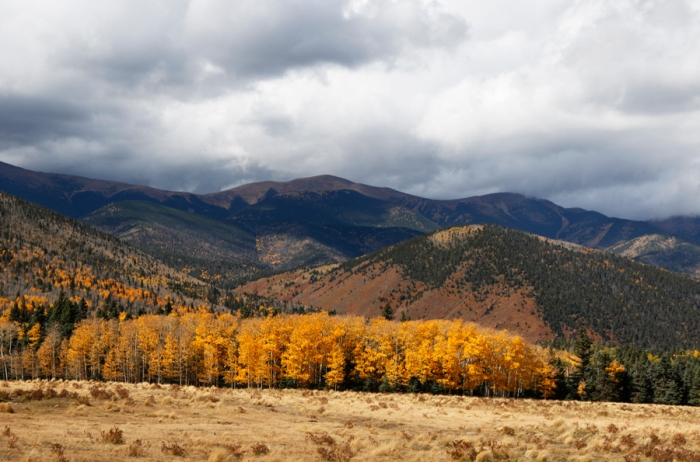 Autumn in the Sangre de Cristo Mountains